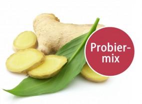 Ingwer Probiermix