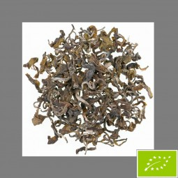 Bio Evergreen Nepal Jun Chiyabari Grüner Biotee DE-ÖKO 022