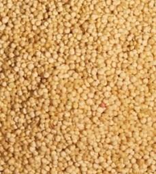 Quinoa Bio Korn, weiss