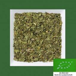 Krauseminze Biotee DE-ÖKO-022 geschnitten
