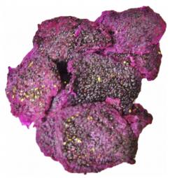 Drachenfrucht (Pitaya) rot ungezuckert ungeschwefelt